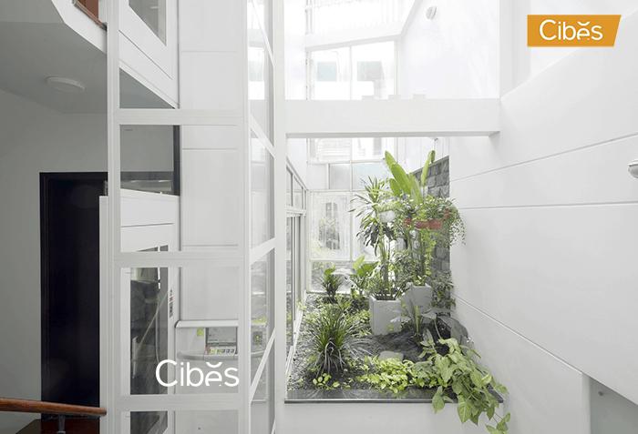 Thang máy nhập khẩu CIBES hài hòa với mọi kiến trúc công trình.
